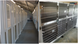 Large cat boarding facilities collage
